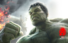 Mark Ruffalo as Dr. Bruce Banner / The Hulk: Avengers: Age of Ultron