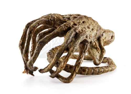 alien vs predator facehugger - photo #26
